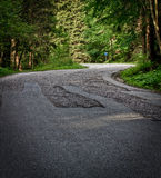 Road through forest Royalty Free Stock Images