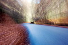 Road in forest. Empty road in forest with motion blur Stock Photos