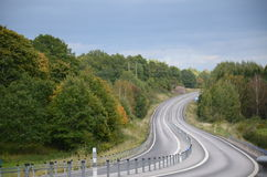 Road and forest Stock Photography