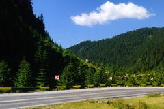 Road through forest. Beautiful mountain road with blue sky through forest stock photos