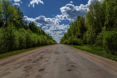 Road forest asphalt destroyed Royalty Free Stock Photography