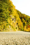 Road in the forest. autumn. Autumn. The photo was taken in the woods behind the city of Sochi Royalty Free Stock Photo
