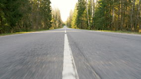 Road between forest - flying camera shot stock video