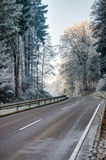 Road through a forest with frosted trees Stock Photo
