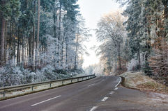 Road through a forest with frosted trees. Bavaria, Germany Stock Photography