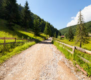 Road through forest in mountains Stock Photography