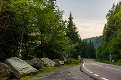 Road through the forest in mountains. Asphalt road through the green forest in mountains at sunrise Royalty Free Stock Photo
