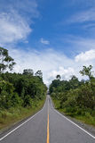 Road in forest of national park, Thailand Stock Images