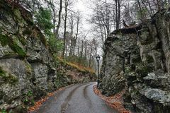Road in the forest near Hohenschwangau castle in Germany Stock Images