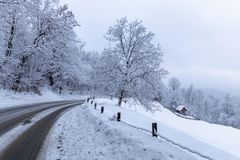 The road through the forest among snow covered trees. In winter royalty free stock photography