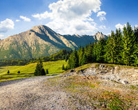 Road through forest to high mountains. Road through spruce forest to mountains with high rocky peak Stock Photos