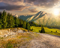 Road through forest to high mountains at sunset. Road through spruce forest to mountains with high rocky peak in evening light Royalty Free Stock Photo