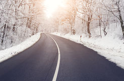 Road in forest in winter Stock Images