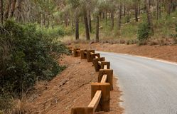 Road in the forest with wooden guardrail Stock Photography