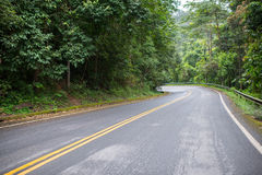 Road. In forrest Chiang Mai Stock Image