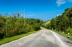 Road in forrest. Road in the forrest, Thailand Royalty Free Stock Photography