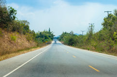 Road in forrest Stock Photo