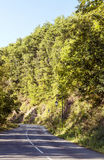 Road in France surrounded by trees Royalty Free Stock Images