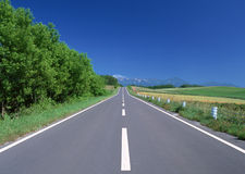 Road and Freedom Stock Photos