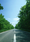 Road and Freedom Royalty Free Stock Images