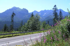 Road of freedom in Tatra Mountains Royalty Free Stock Images