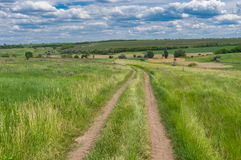 Road through fresh summer meadow near Dnipro city in central Ukraine Royalty Free Stock Photography