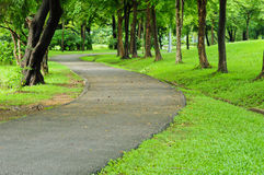 Road and garden. Image of road and garden in Thailand Royalty Free Stock Images