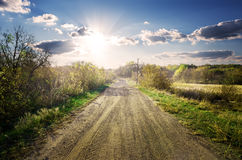 Road through garden Royalty Free Stock Photography
