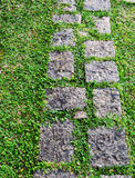 Road in garden. The road in a garden with green grass Royalty Free Stock Photos