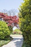 Road in garden Stock Photo