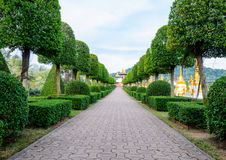 Road in the garden Royalty Free Stock Image