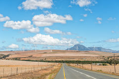 Road from Genadendal to Caledon with wind-farm in distance Royalty Free Stock Photo