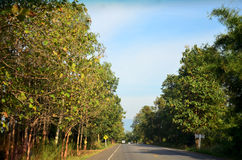 Road go to hill top of Phu Hin Rong Kla mountain and national pa Royalty Free Stock Photography