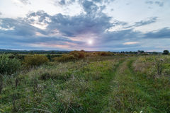 The road goes through a grassy field. On a sunset background Royalty Free Stock Photography