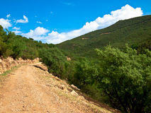 The road goes to the mountains Royalty Free Stock Images