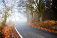 Road going in to the fog Royalty Free Stock Image
