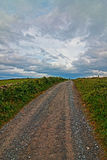 Road going to the Moher Tower on the Cliffs of Moher in Country Clare Royalty Free Stock Photo