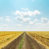 Road in golden field and clouds Royalty Free Stock Images