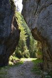 Road through gorge in Piatra Craiului National Park Royalty Free Stock Photos