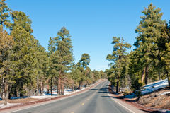Road through Grand Canyon Stock Images