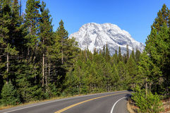 Road in  Grand Teton National Park. Wyoming, USA Royalty Free Stock Photos