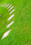 Road on the grass Royalty Free Stock Photo
