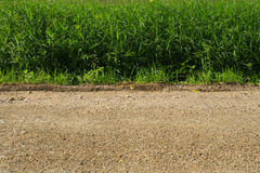 Road grass board. Pattern abstract Royalty Free Stock Photos