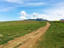 Road on Grassland Royalty Free Stock Photo