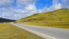 Road of the grasslands Royalty Free Stock Images