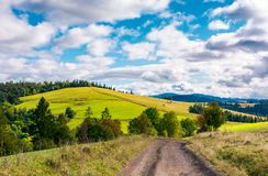 Road through grassy meadow on a forested hill. Lovely nature scenery under the cloudy sky Stock Images