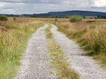 Road with gravel in the country Stock Images