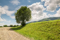 Road with gravel stretches up the hill Stock Images