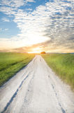 Road on greeen meadow Royalty Free Stock Photos