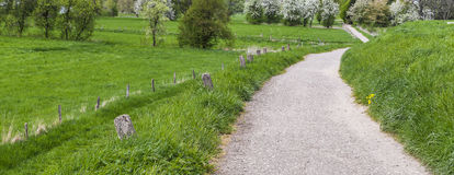 Road in green countryside. Panoramic view of a narrow road receding through green countryside with trees in the background Stock Photo